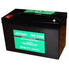 Аккумуляторная батарея EverExceed Standard Range ST-12100