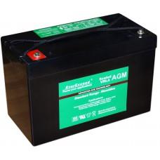 Аккумуляторная батарея EverExceed Standard Range ST-12110