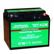 Аккумуляторная батарея EverExceed Standard Range ST-1240